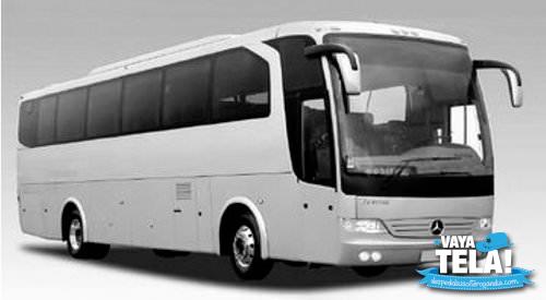 Autobus para despedidas de soltera en Gandia