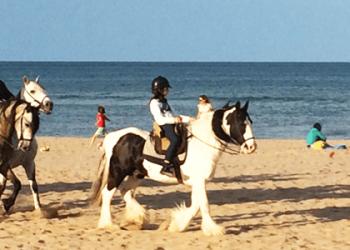 Paseo a caballo en Gandia