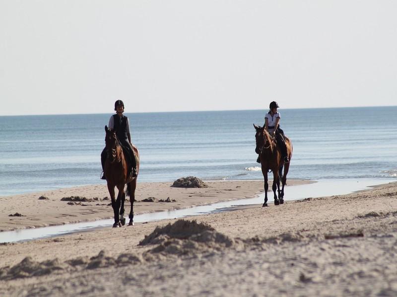 Despedidas en la Playa de Gandia
